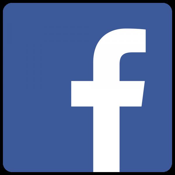 Facebook Electio Conseil